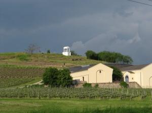 Il vino di Tokaj